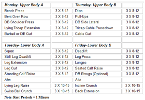 Weekly Weight Lifting Routines Schedules